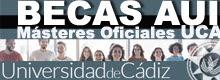 Aula Universitaria Iberoamericana (AUI): ABIERTA Convocatoria de BECAS DE AYUDA DE MOVILIDAD para Másteres
